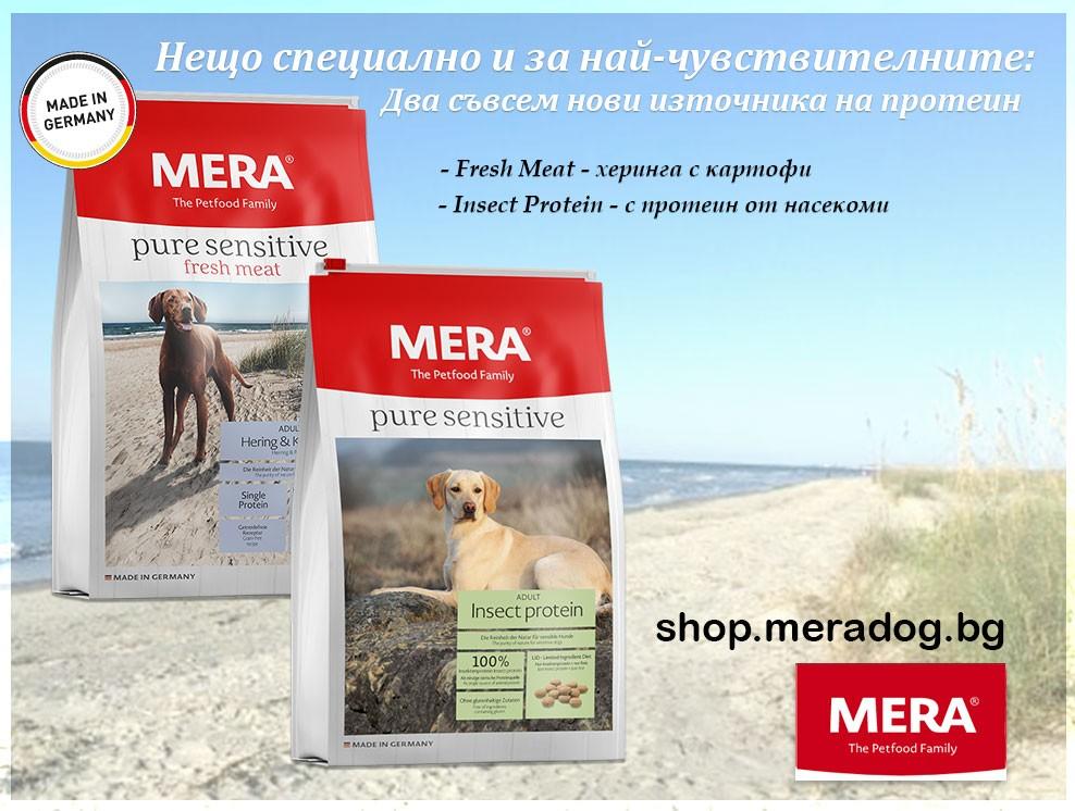 Mredaog - Pure